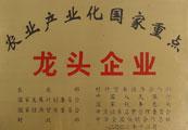 2002.12農業(ye)產(chan)業(ye)化(hua)國(guo)家重點(dian)龍頭(tou)企業(ye)