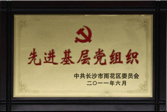 2011.6先進基(ji)層黨組織