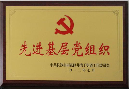 2012.7 先進基(ji)層黨組織