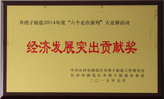 2014經濟發展(zhan)突出(chu)貢獻獎(jiang)