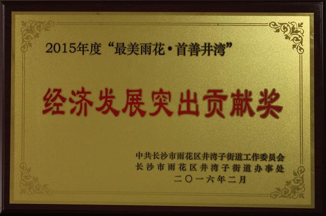 2015經濟(ji)發展突出貢獻獎