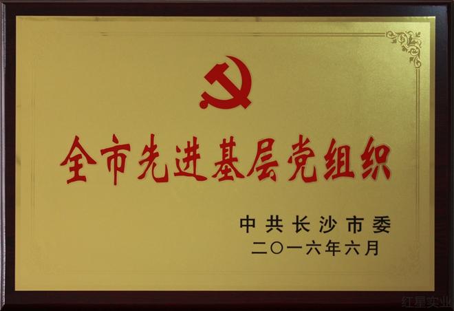 全市先進基(ji)層黨組織2016